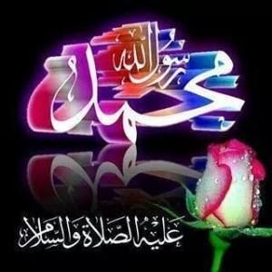 IMG_39109964224603
